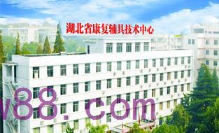 湖北省康复辅具中心消防改造工程